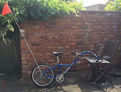 Burley Piccolo Tag Along Trailer Bike