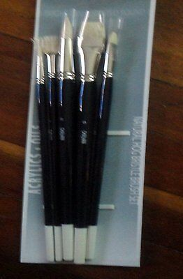 Art Brushes - Set 5 Long Handle Bright, Fan & Pointed Bristle Hair  Brushes