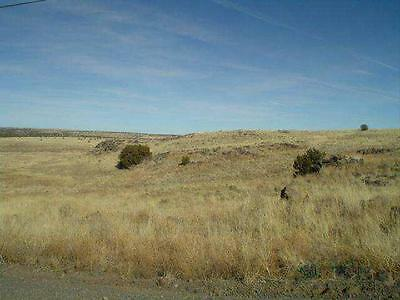 1 acre lot in Apache County (Concho Lake), Arizona - Cash or financing