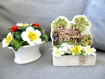 ROYAL ALBERT COTTAGE GARDEN YEAR SERIES SPRING AYNSLEY CHRISTMAS ROSE hand Pain