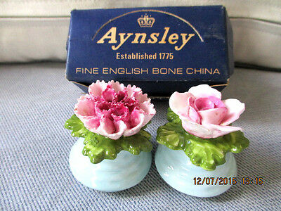 Aynsley Hand  Moddled hand painted mini salt pepper Floral shakers Boxed