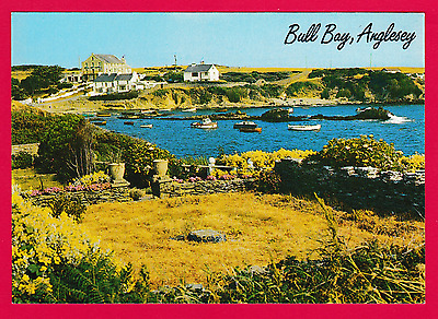 Unposted . nice photographic card Bull Bay, Anglesey