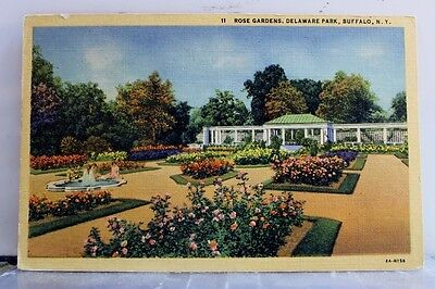 New York NY Buffalo Delaware Park Rose Gardens Postcard Old Vintage Card View PC