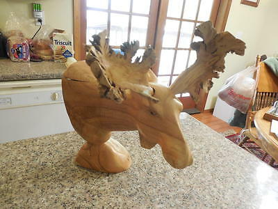 Hand Crafted Wood Moose Head Sculpture- Root Antlers ID:22967