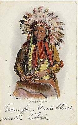 "American Indian "" Black Eagle ""  Glitter On Ethnic Image. Postage Due Franking"