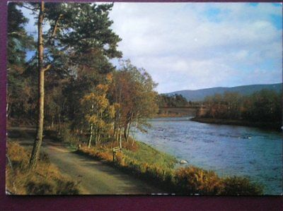 Postcard Moray Grantown On Spey - Autumn On The Spey