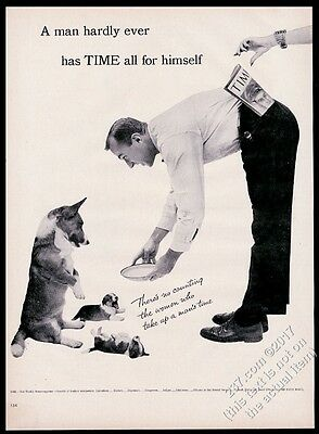 1954 Pembroke Welsh Corgi & puppy dogs photo Time vintage print ad