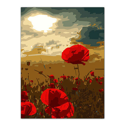Red Flower Acrylic Paint By Number Kit DIY Digital Oil Painting Home Decor