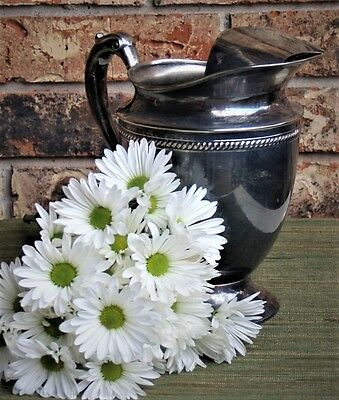 Forbes Silver Company KSN Silver Plate Water Pitcher with Ice Catch