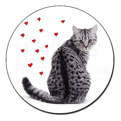 Silver Tabby Cat with Red Hearts Fridge Magnet Birthday Gift Idea, AC-140FM