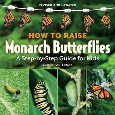 How to Raise Monarch Butterflies: A Step-By-Step Guide for Kids by Carol Pastern