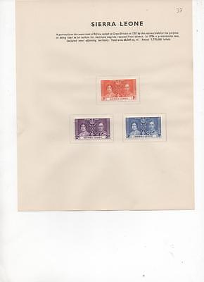 Sierra Leone 1937 Coronation issue set of 3 Mint Stamps on album page