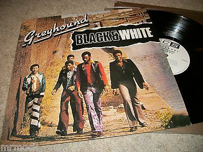 Greyhound- Black And White Vinyl Album