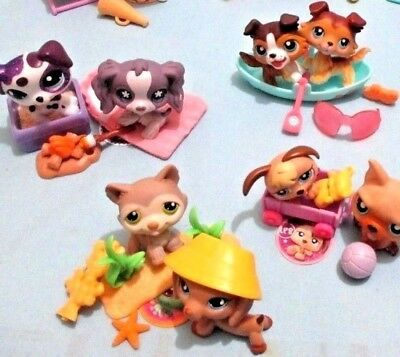 Littlest Pet Shop Lot 5 Random Pcs 2 Puppy Dogs and 3 Accessories Surprise Gift