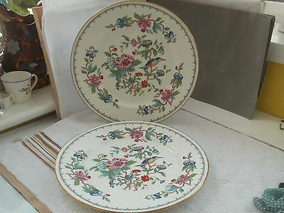 Two Aynsley Dinner Plates In Pembroke Pattern   Floral And Bird Pattern