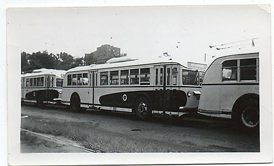"""Kansas City Mo. 1946 """"troost Avenue Yard""""--Us Or Trolly-Reguardless Awesome View"""