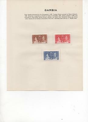 Gambia 1937 Coronation issue of 3 Mint Stamps  on an Album Page