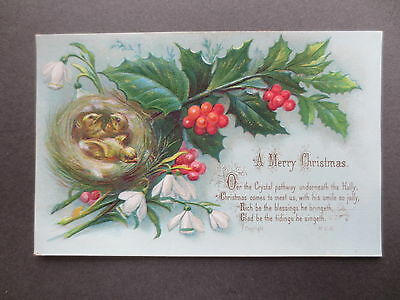 Antique CHRISTMAS Greetings Card Baby Birds Nest Holly Snowdrop Victorian Chromo