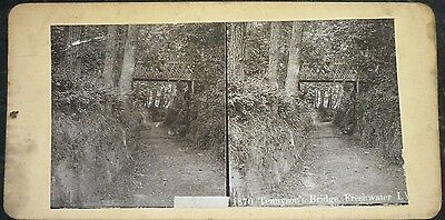 Stereoview Nice Early Image Tennyson's Bridge Freshwater Isle Of Wight No 1870