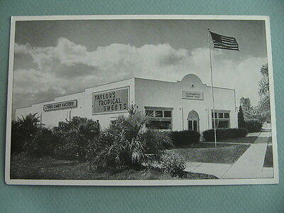 Taylors Tropical Sweets Candy Factory Store DAVENPORT FLORIDA FL Postcard
