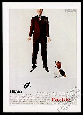 1960 Basset Hound and man photo Pacific Mills Timely Suits vintage print ad