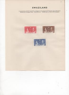 Swaziland 1937 Coronation set of 3 Mint stamps on Album Page
