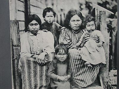 1906 Postcard A Study in Indian Expressions Native Family Not Looking Happy