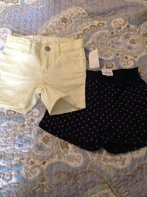 NWT baby Gap Shorts Size 18-24 Months New