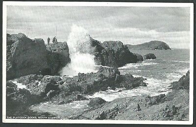 North Berwick East Lothian The Platcock Rocks c1950s JB White Printed Postcard