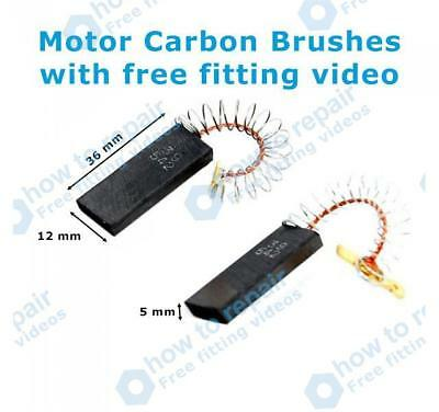 Pack of 2 Does not fit FHP motors Bosch WFO2867GB//12 Carbon Brushes