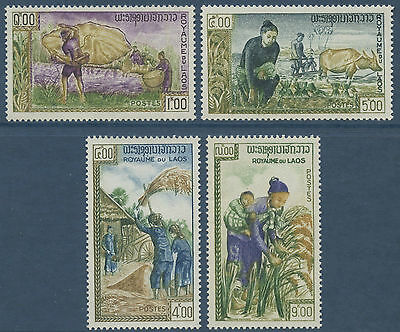 LAOS N°86/89** Campagne contre la faim  TB 1963, Freedom from Hunger  #81-84 MNH