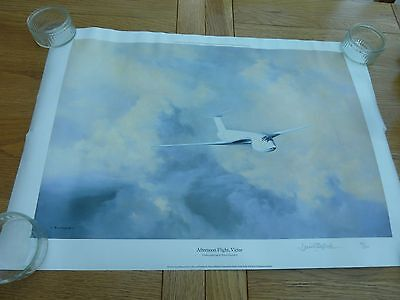 1985 HAND SIGNED PRINT AFTERNOON FLIGHT VICTOR DAVID SHEPHERD No 84 OF 850