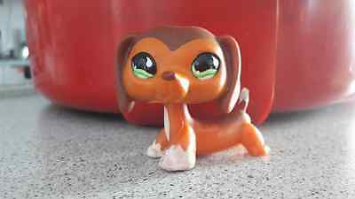 Rare Little Petshop / Lps / Chien / Dog / Teckel / Dachshund / Lps 675