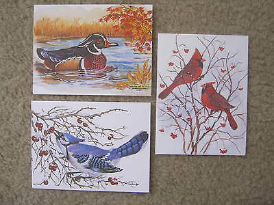 3 Vintage Artistic Blank Note Greeting Cards ~ Birds ~ by John Cornacchio