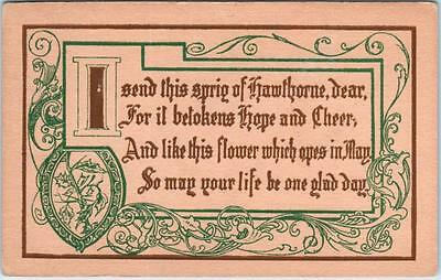 """Arts & Crafts Style  """" I SEND THIS SPRIG OF HAWTHORNE""""  Verse ca 1910s  Postcard"""