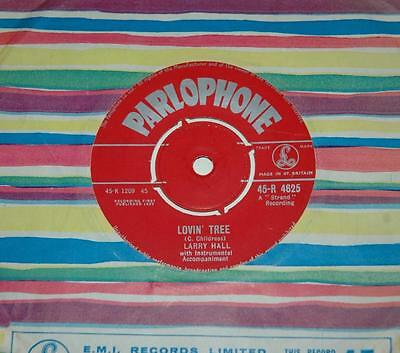 Larry Hall, Sandy*lovin' Tree, 1959 Parlophone R 4625, Teenbeat, Popcorn, Ex+