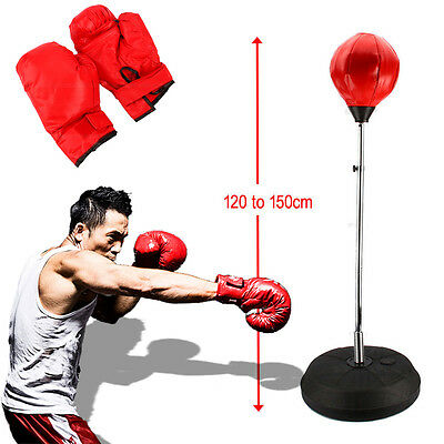 4Ft 5Ft Punch Height Bag Ball Mitts Gloves Kit Boxing Set Adult Free Standing