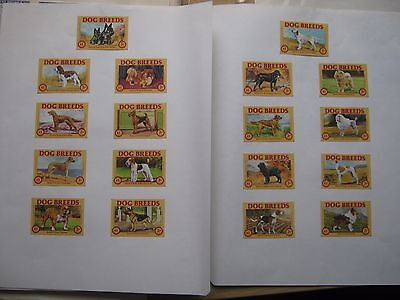 Set Of 18 Old Dog Matchbox Labels.