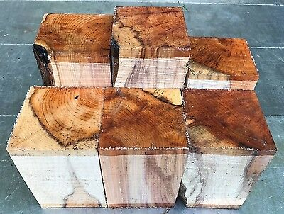70-80Mm Squares 6Pcs Lot 754 Yew Woodturning Figured Timber Blank