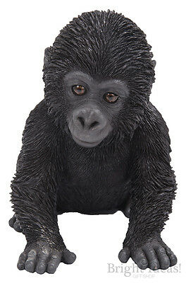 Vivid Arts - PET PALS WILDLIFE PET & GORILLA BOX - Baby Gorilla