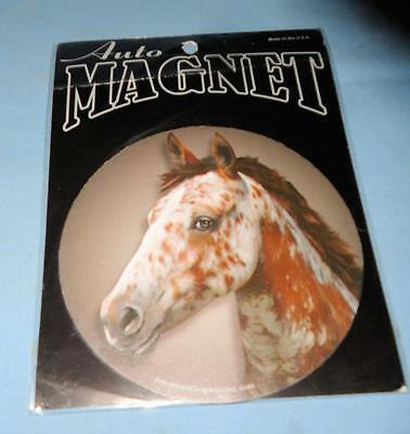 Horse Pinto Auto Magnet New Lockers Trucks Refrigerators Trailers