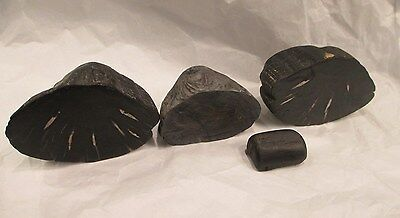 4 Pieces of Black Petrified Wood~About 2 Pounds