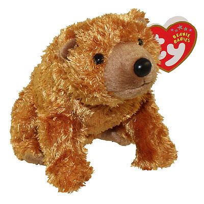 TY Beanie Baby - SEQUOIA the Brown Bear (5 inch) - MWMTs Stuffed Animal Toy