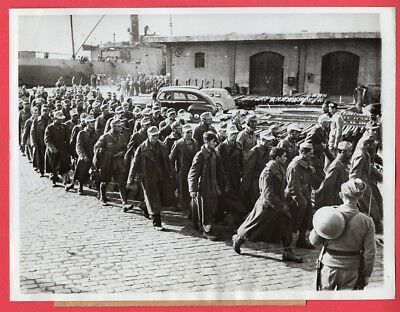 1941 Axis Prisoners in the Middle East 7x9 Original News Photo