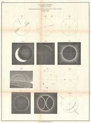 1860 U.S. Coast Survey Chart Illustrating the Solar Eclipse of July 1860