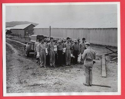 1943 Japanese POWs Awaiting Transfer to POW Camp South Pacific 7x9 News Photo