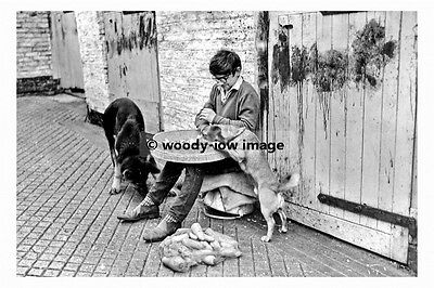 pt8090 - Beverley , Kings Arms Stables , Yorkshire 1965 - photograph 6x4