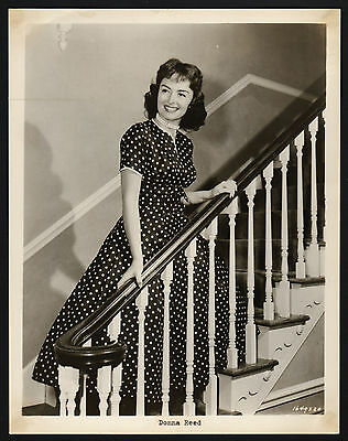 Donna Reed, film television actress, producer, Pressefoto, press photo /121