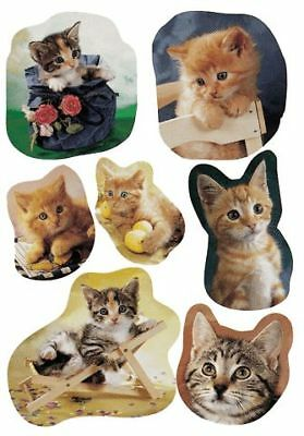 Decor-Sticker Fotogene Katzen 5747