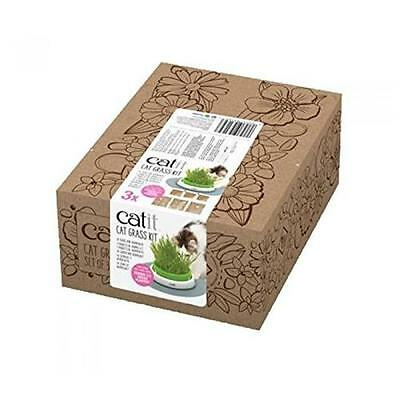 CAT IT Kit Herbe a chat 3 pieces